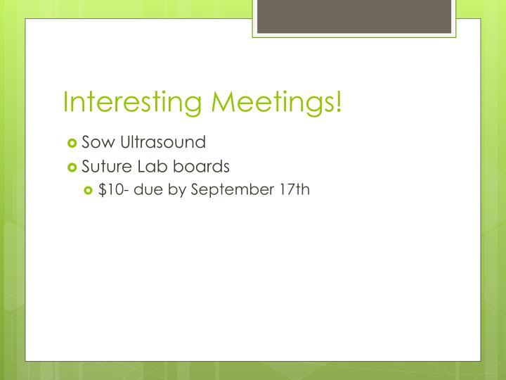 Interesting Meetings!