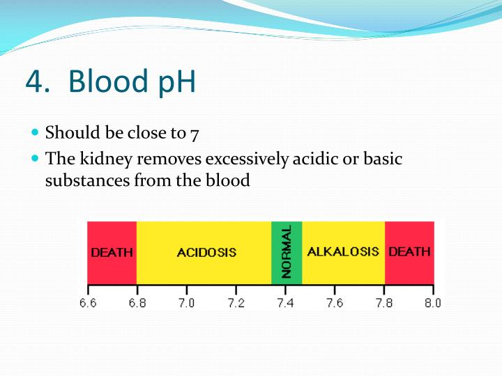 4.  Blood pH