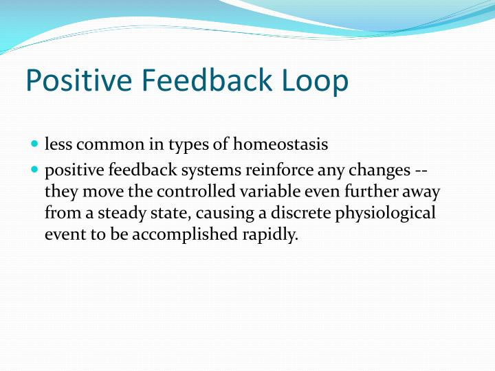 Positive Feedback Loop