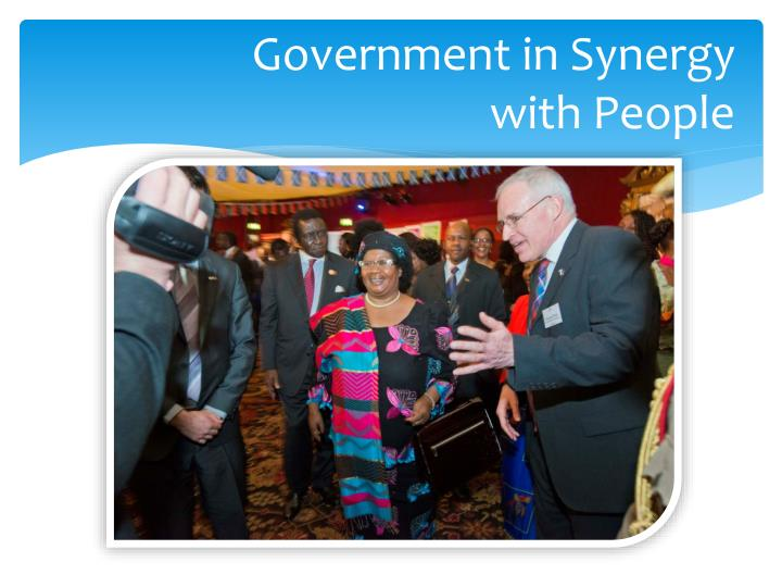 Government in Synergy