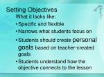 setting objectives1