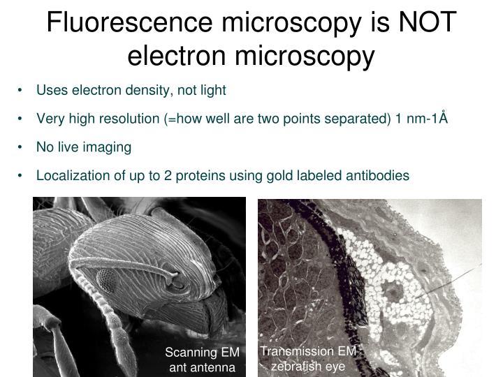 Fluorescence microscopy is NOT
