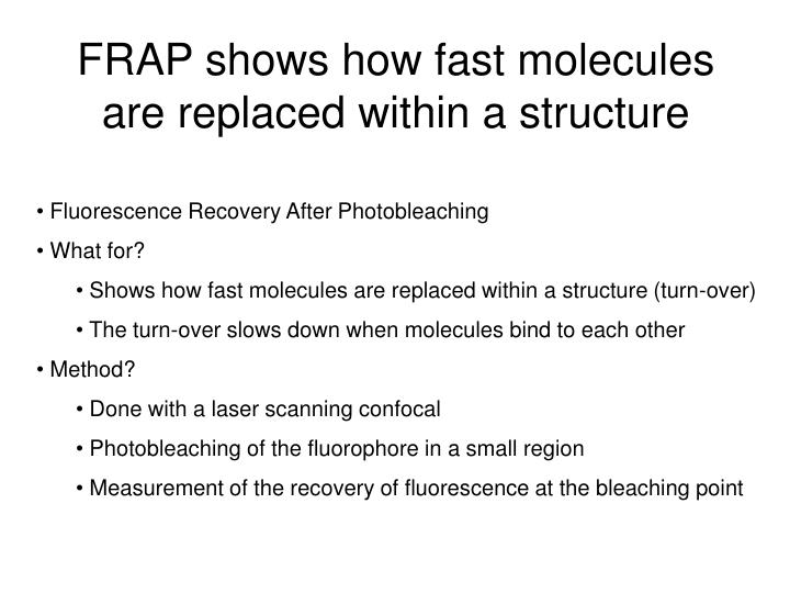 FRAP shows how fast molecules are replaced within a structure
