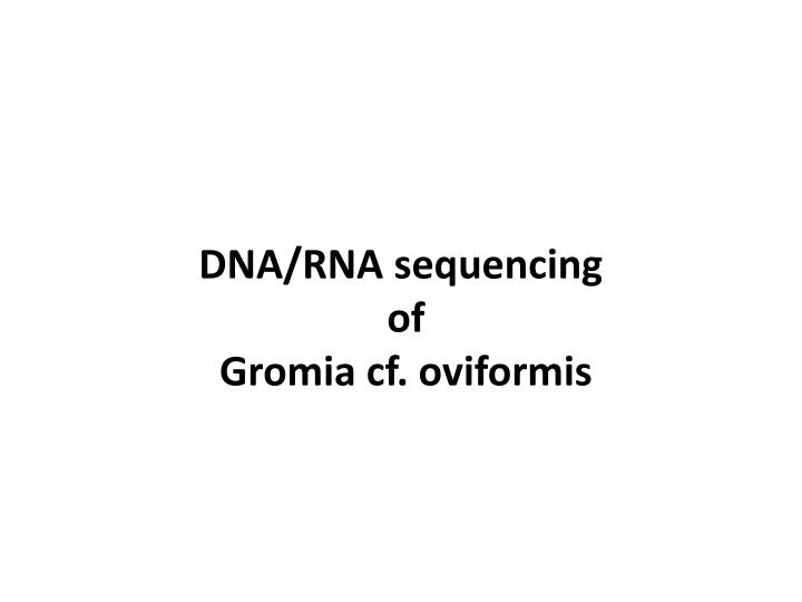 DNA/RNA sequencing