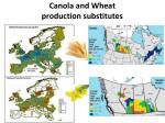 canola and w heat production substitutes