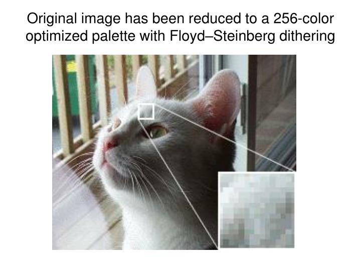 Original image has been reduced to a 256-color optimized palette with Floyd–Steinberg dithering
