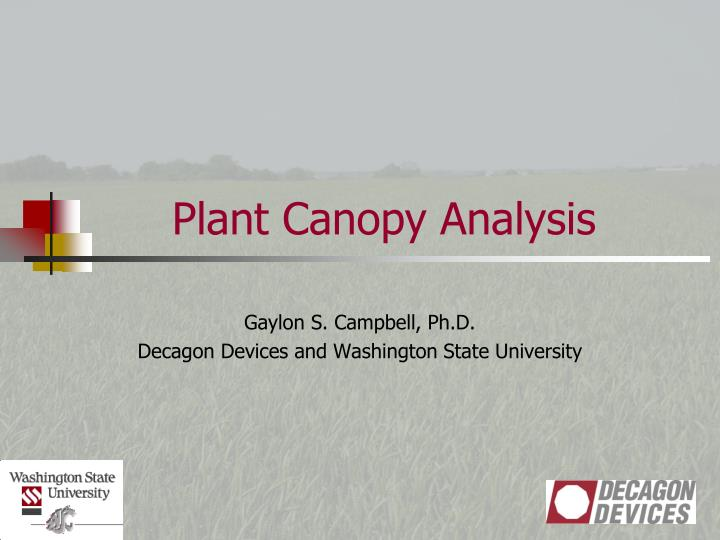 plant canopy analysis