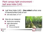 plant canopy light environment leaf area index lai