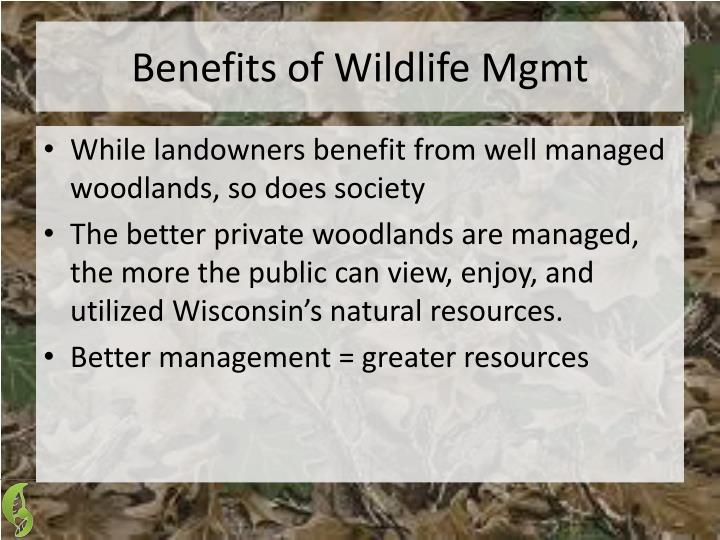 Benefits of Wildlife Mgmt