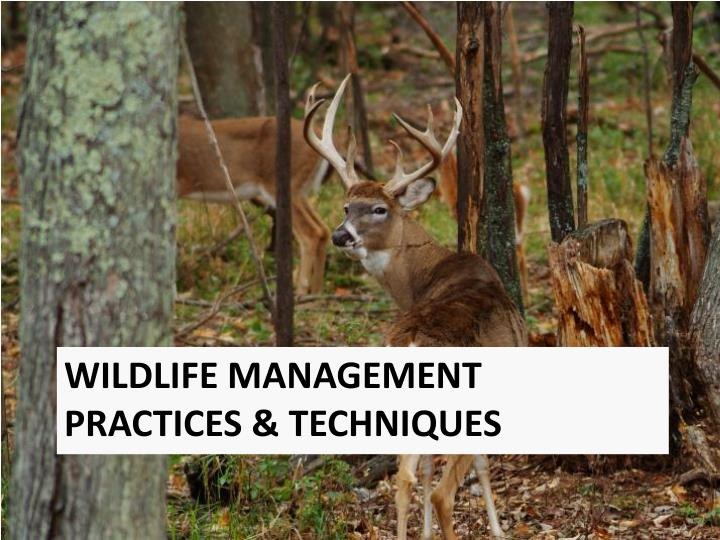Wildlife Management Practices & Techniques