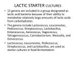 lactic starter cultures