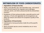 metabolism of food carbohydrates