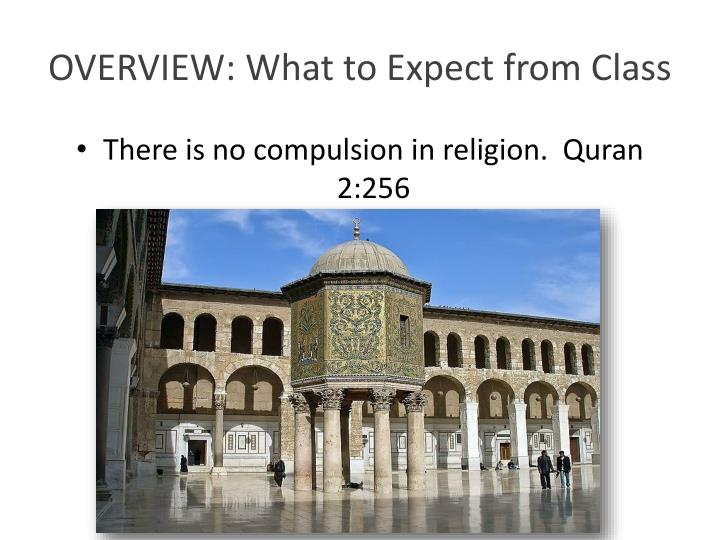 Overview what to expect from class