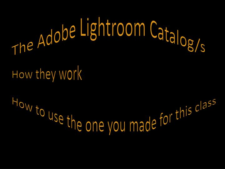 The Adobe Lightroom Catalog/