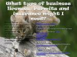 what type of business licenses permits and insurance might i need