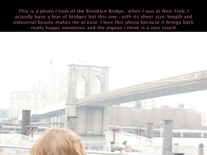 This is a photo I took of the Brooklyn Bridge,  when I was in New York. I actually have a fear of bridges but this one , with its sheer size, length and industrial beauty makes me at ease. I love this photo because it brings back really happy memories and the pigeon I think is a nice touch!