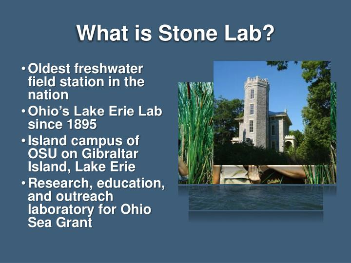What is Stone Lab?