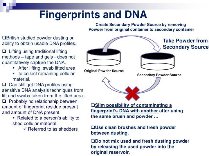 Fingerprints and DNA
