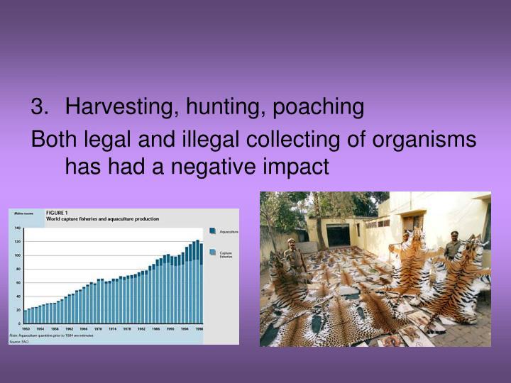 Harvesting, hunting, poaching