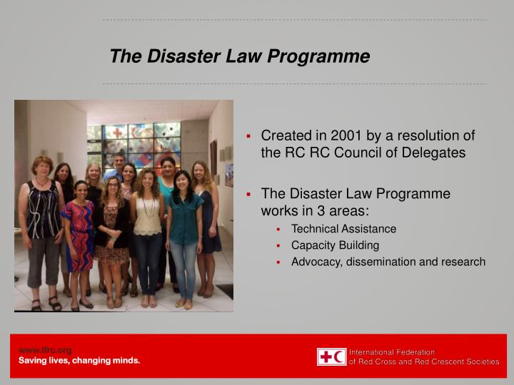 The disaster law programme