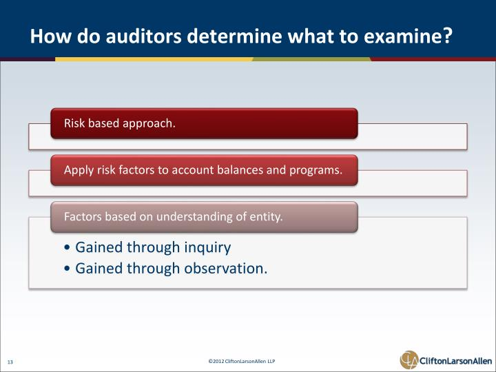 How do auditors determine what to examine