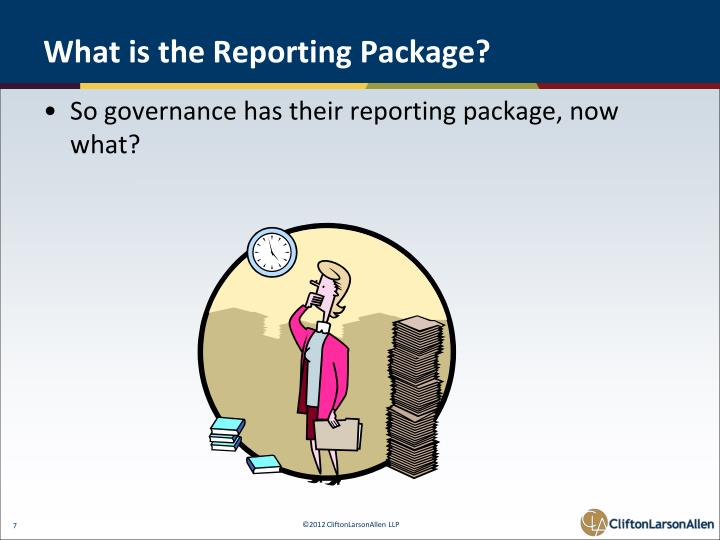 What is the Reporting Package?