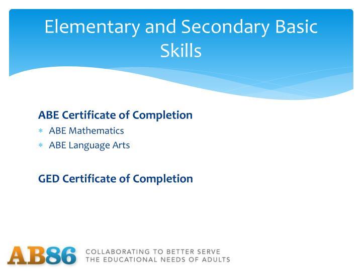Elementary and Secondary Basic Skills