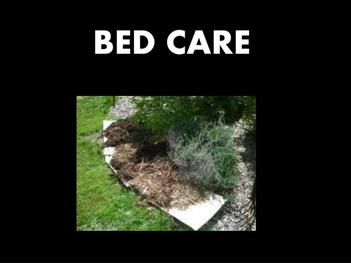 BED CARE