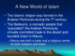 a new world of islam