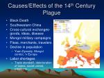 causes effects of the 14 th century plague