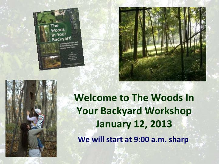 welcome to the woods in your backyard workshop january 12 2013 n.