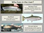 who lives in the river