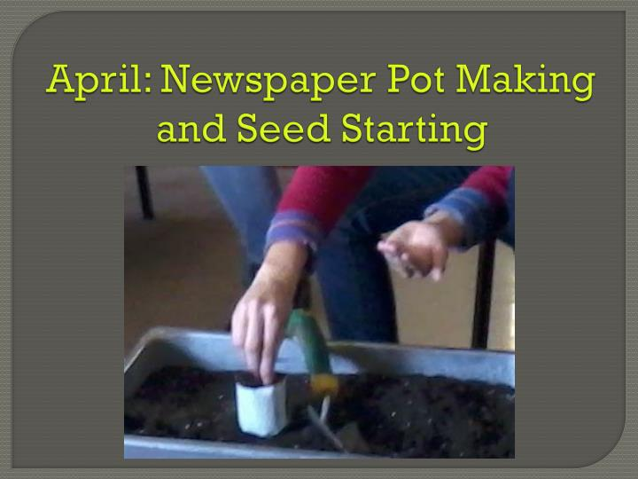 April: Newspaper Pot Making and Seed Starting