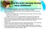 how does the brain develop during early childhood