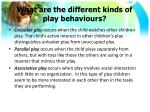 what are the different kinds of play behaviours1