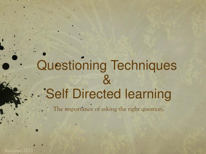 Questioning techniques s elf d irected learning