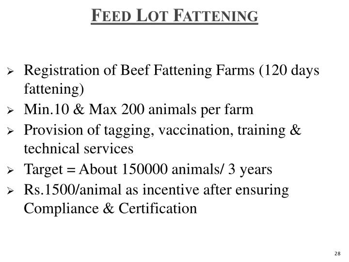 Feed Lot Fattening