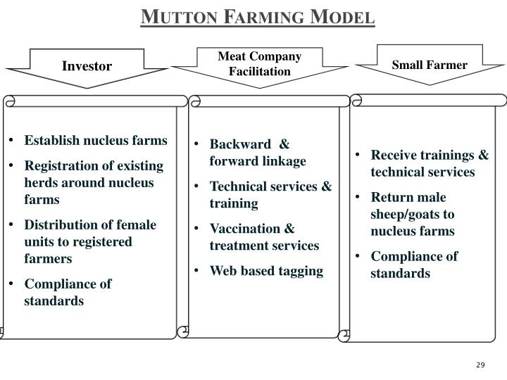 Mutton Farming Model