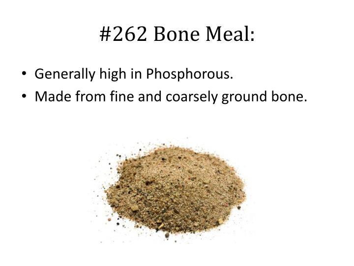 #262 Bone Meal: