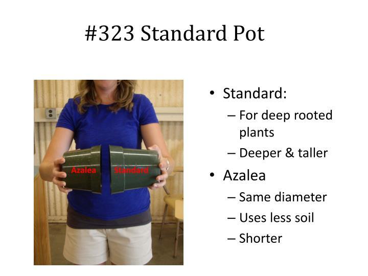 #323 Standard Pot