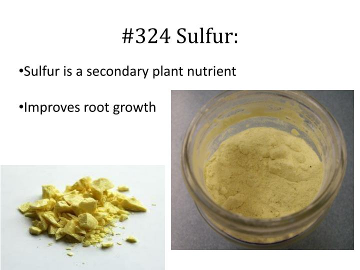 Sulfur is a secondary plant nutrient