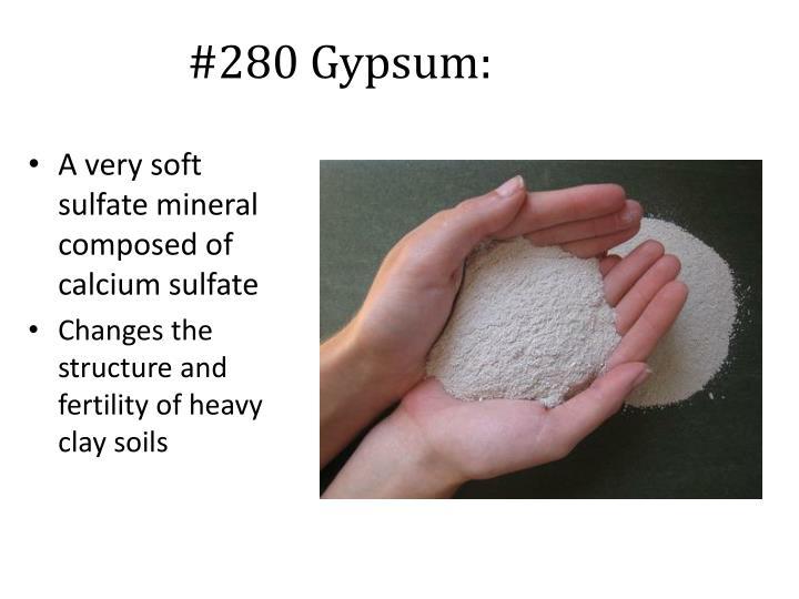 #280 Gypsum: