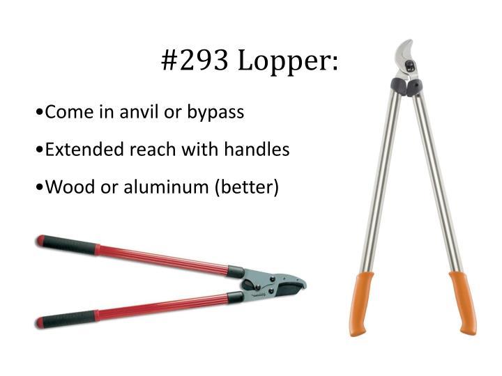 #293 Lopper: