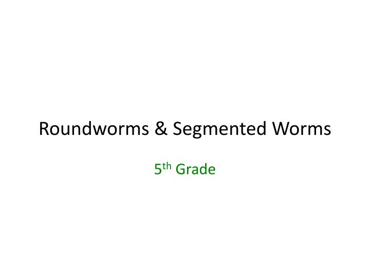 roundworms segmented worms n.