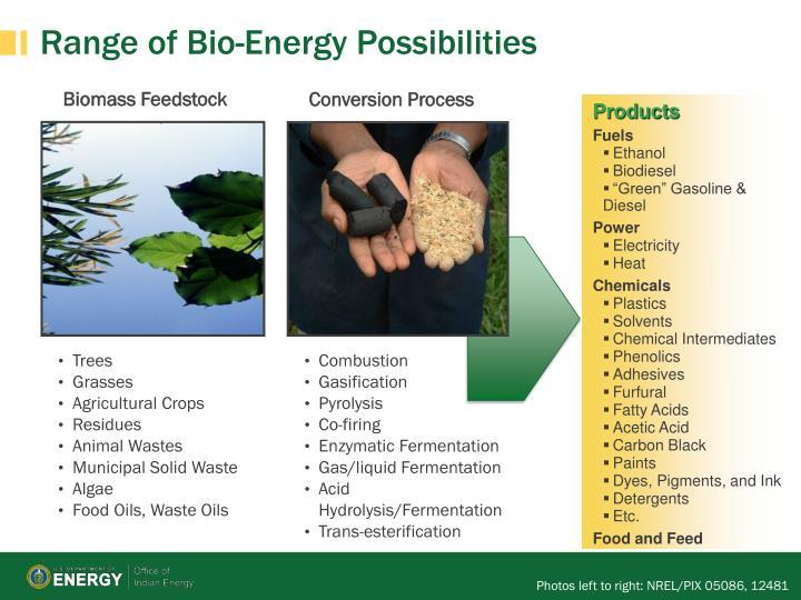 Range of bio energy possibilities