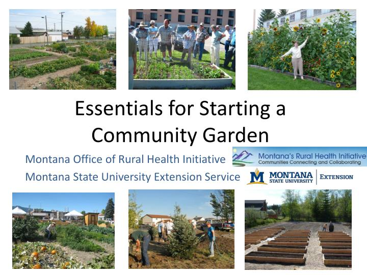 essentials for starting a community garden n.
