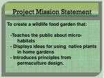 project mission statement