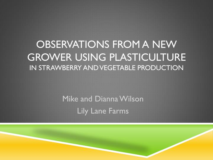 observations from a new grower using plasticulture in strawberry and vegetable production n.