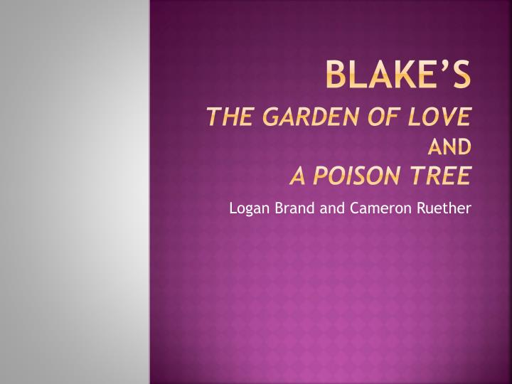 blake s the garden of love and a poison tree n.