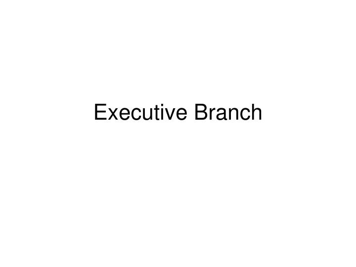 executive branch n.